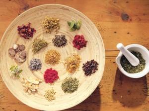 Tanier byliny